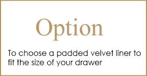 Option-1-300x155 Option