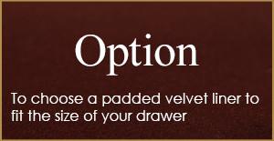 Option-2-300x155 Option